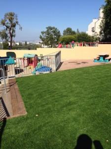 new grass (4)