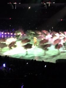 disney on ice (20)