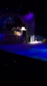 disney on ice (25)