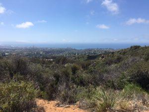 hike pic (6)